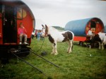 Annual horse fair and Travelling People's Market, Aikey Brae, Buchan